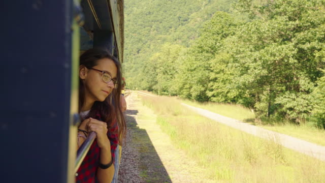 The attractive 15-years-old teenager girl enjoy the train ride through the scenic landscapes. video