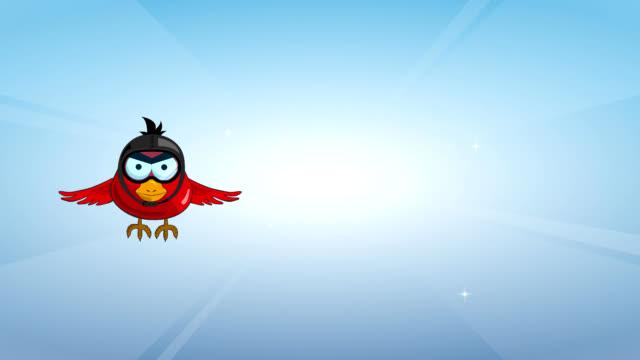The aviator bird video