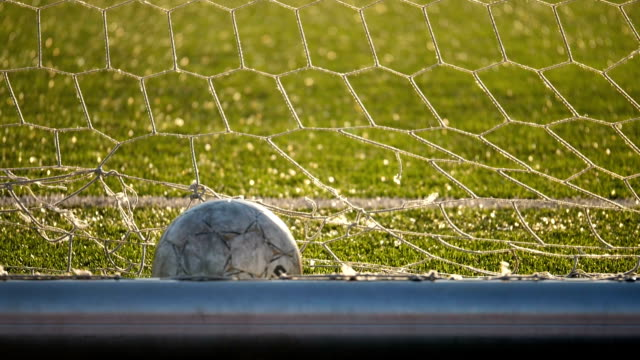 the ball lies in the football goal, soccer championship - football field stock videos & royalty-free footage