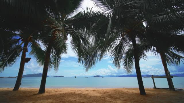 der strand von phuket thailand - moskitonetz stock-videos und b-roll-filmmaterial