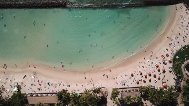 The Beach in Waikiki with a Birds Eye View Drone shot of Waikiki beach in Oahu pointing straight down as beach goers enjoy a sunny day. waikiki stock videos & royalty-free footage