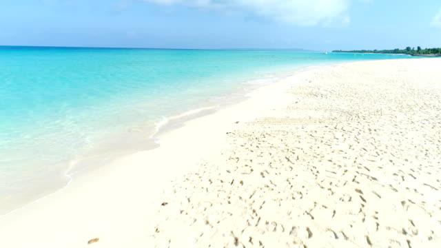 日本では沖縄の美しい海の景色 - 海岸点の映像素材/bロール