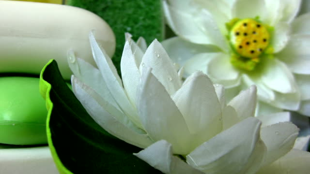 The beauty soaps The beauty oils and soaps with water lily. Focus behind from the front. HD 1080i. massage oil stock videos & royalty-free footage