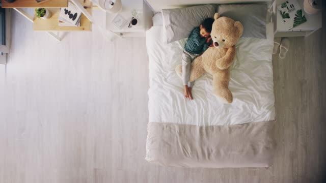 vídeos de stock e filmes b-roll de the best cuddle buddy ever - teddy bear