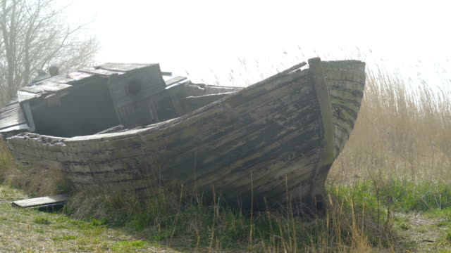 the big abandoned wooden boat on the side of the river - orticoltura video stock e b–roll