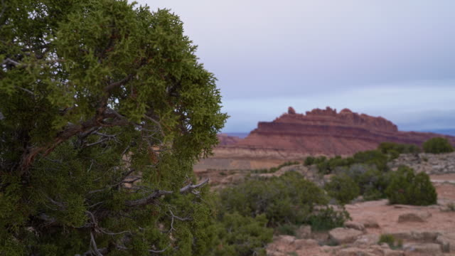 The Black Dragon Canyon, Utah, USA, in the early spring. Static camera, focus rack from foreground to background