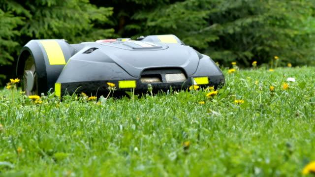 草地を走る黒い芝刈り機 ビデオ