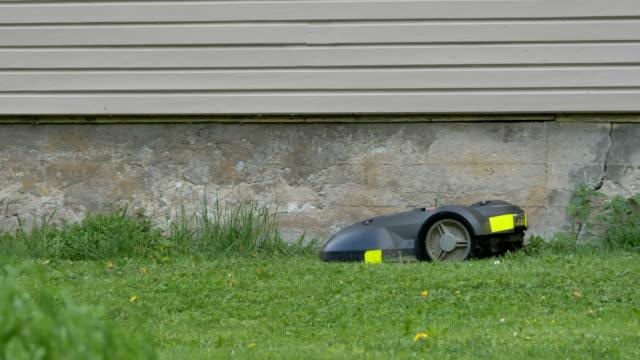 芝生の上の黒い小さな芝刈り機 ビデオ