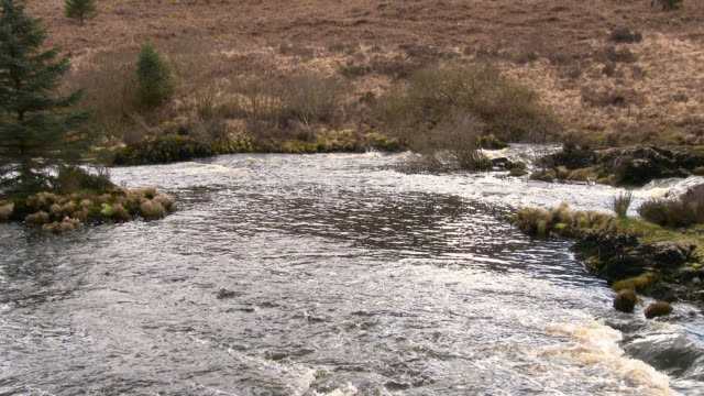 The Black Water of Dee, Dumfries and Galloway, Scotland The Black Water of Dee, a river that runs from Stroan Loch, Kirkcudbrightshire, Dumfries and Galloway, south west Scotland. galloway scotland stock videos & royalty-free footage