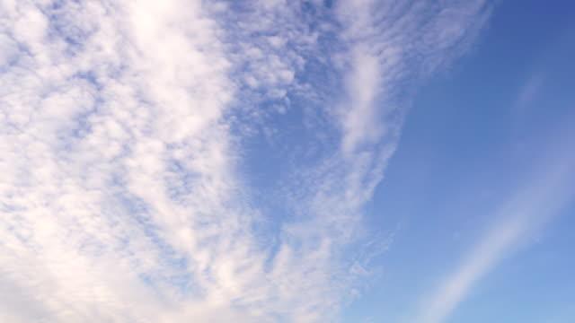 vídeos de stock, filmes e b-roll de o céu azul tem uma bela massa de nuvens brancas com uma cópia do espaço. os pássaros voam sul - manipulação digital