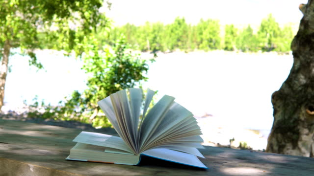 stockvideo's en b-roll-footage met het boek ligt op tafel. - literatuur