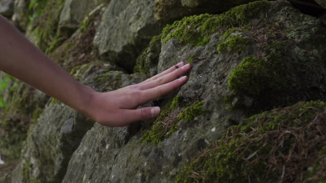 The boy slowly strokes his hand with an old grungy stone overgrown with moss in a wild forest.