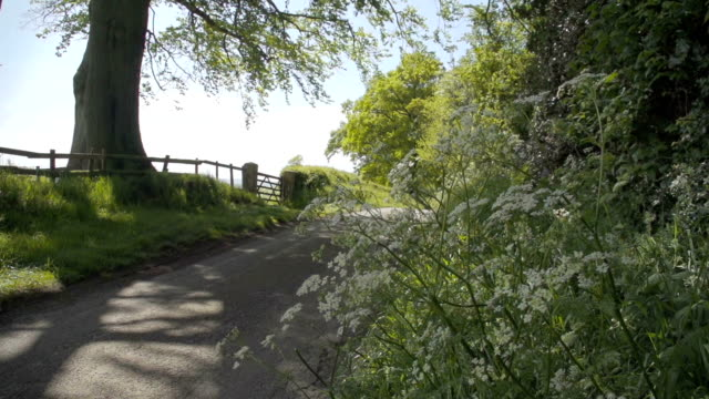The British Countryside video