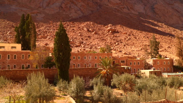 The building and the olive grove on the slopes barren mountains video