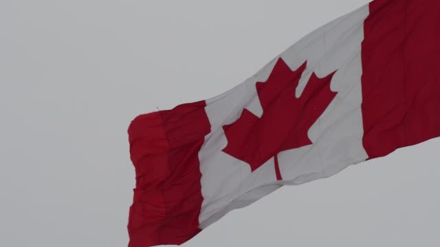 the canadian flag flying high in the capital of canada in the winter season - canada day stock videos & royalty-free footage