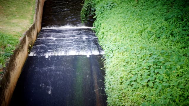 The canal of irrigation water conveyance for agriculture. video