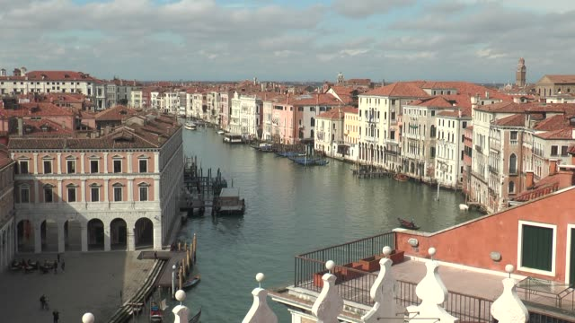 the canals of venice are the arteries of the city. - pianta vascolare video stock e b–roll