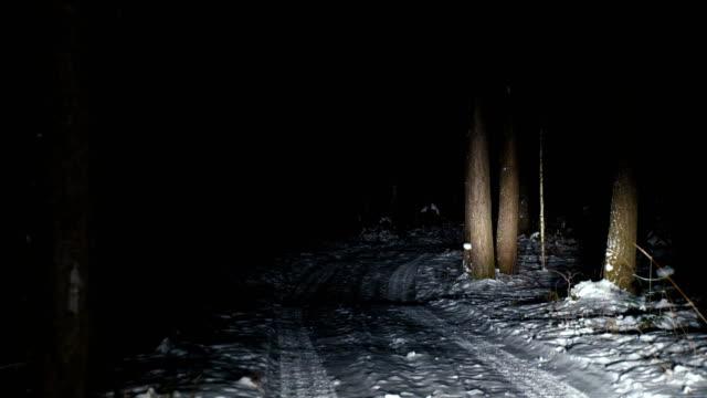 vídeos de stock e filmes b-roll de the car drives slowly along a narrow forest road in winter. - passagem de ano