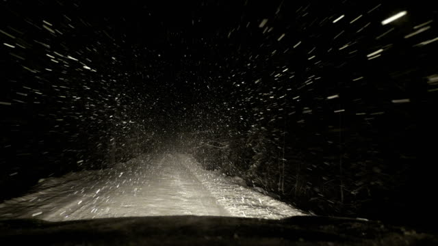 The car is moving along a forest snow-covered road.