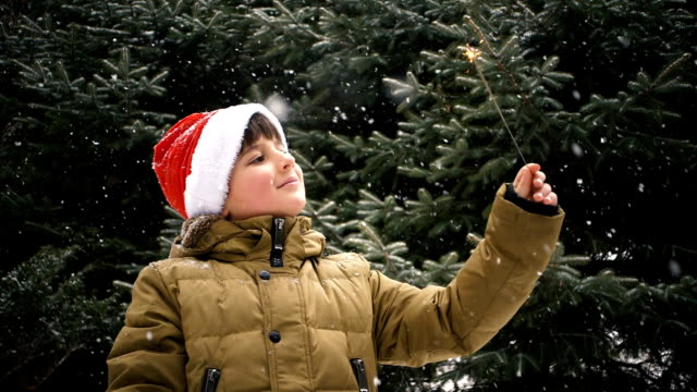 the child enjoys winter and holiday video