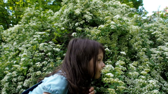 the child is sniffing flowers. - annusare video stock e b–roll