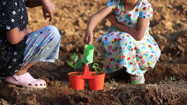 The children growing plants in pots