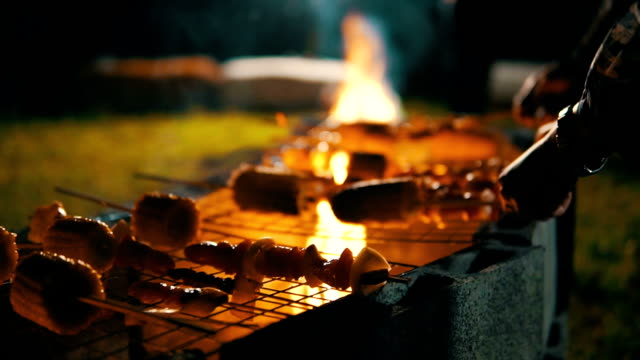 The Coals In The Grill. Meat Is Fried On Coals. Camping video