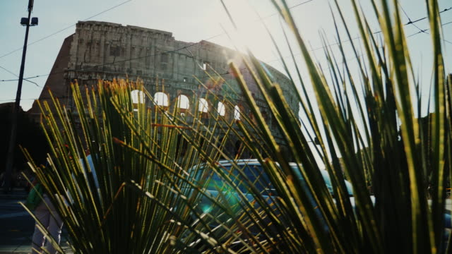 The Coliseum in Rome. The sun shines from the arches, in the foreground the green plants video