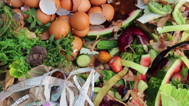 The collection of waste that can break down into soil Leaves, grass clippings, food scraps, coffee, tea, shredded newspaper, tissues, cardboard, egg cartons, paper,  eggshells leftovers stock videos & royalty-free footage