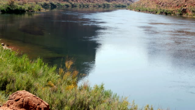 The Colorado river flowing into the Grand Canyon Arizona 4K video