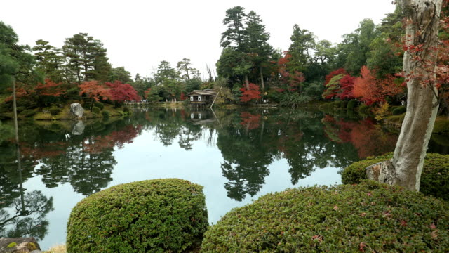 The colorful nature of Japan A beautiful Japanese landscape. A lake surrounded by colorful trees. vascular plants stock videos & royalty-free footage