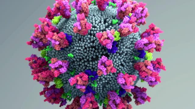 コロナウイルススパイクタンパク質変異。sars-cov-2が細胞に入ることを可能にするタンパク質のd614g突然変異は、ウイルスが広がるのを容易にするかもしれない - 尖っている点の映像素材/bロール