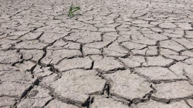 「クラックトアース - 乾燥点の映像素材/bロール