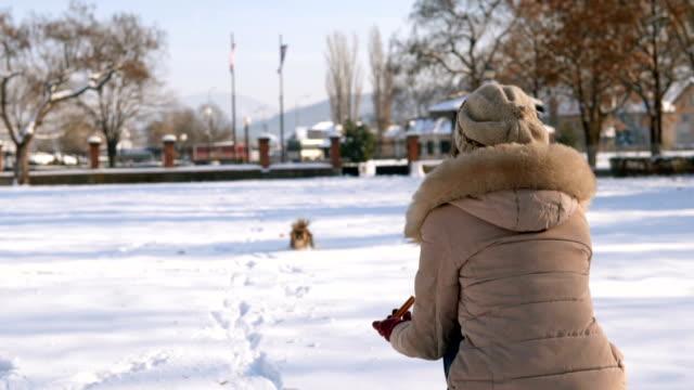 犬は女に向かって走る - 十二月点の映像素材/bロール