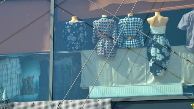 The dress on the manequin inside the shop