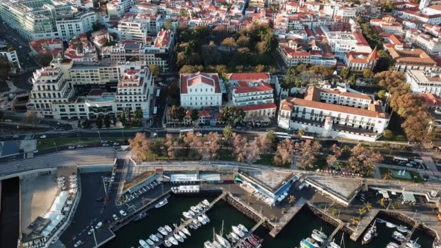 vídeos de stock e filmes b-roll de the drone footage of downtown of funchal, madeira island, portugal - funchal madeira