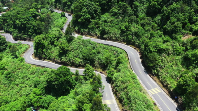 The drone has a bird's eye view of the lush forest of La Qingshan Road.