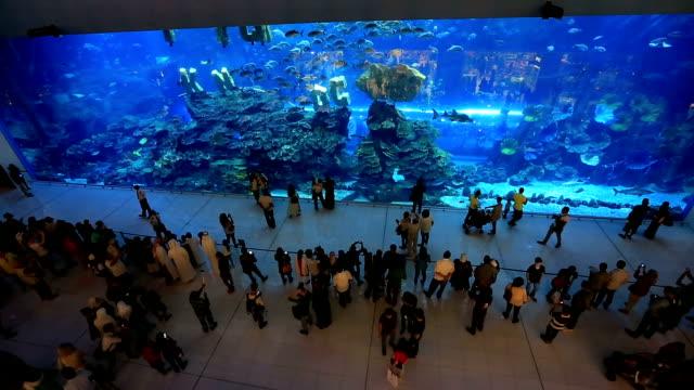 The Dubai Mall in United Arab Emirates UAE影片