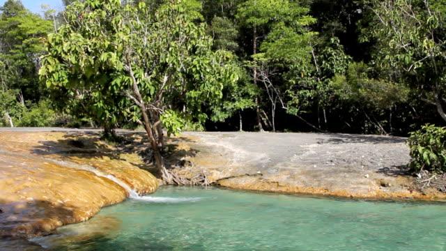 vídeos de stock, filmes e b-roll de a emerald pool, krabi, tailândia. - esmeralda