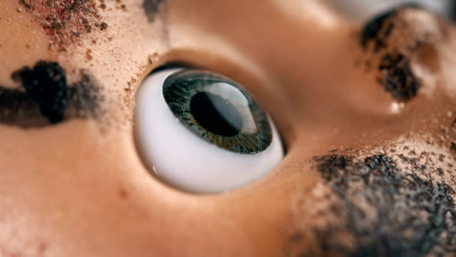 the eye of the doll turns on the camera, as if watching someone, close-up
