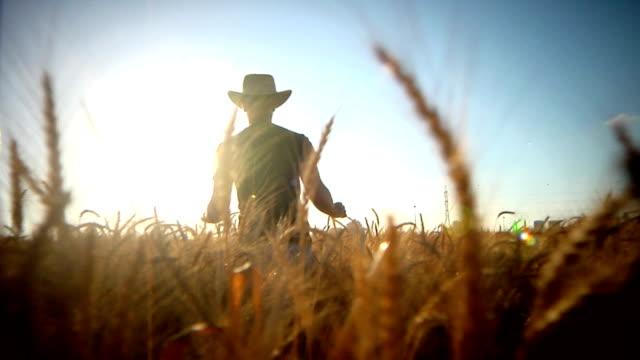 「農家 ビデオ