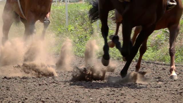die füße der pferde auf der rennstrecke - pferderennen stock-videos und b-roll-filmmaterial