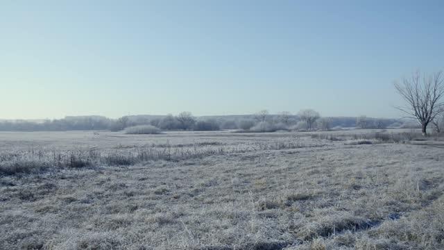 das feld mit gefrorenem gras und bäumen in der ferne ist mit frost und schnee bedeckt und wird am frühen frostigen morgen von der sonne beleuchtet. es liegt ein frostiger dunst in der luft. - schneeflocke sonnenaufgang stock-videos und b-roll-filmmaterial