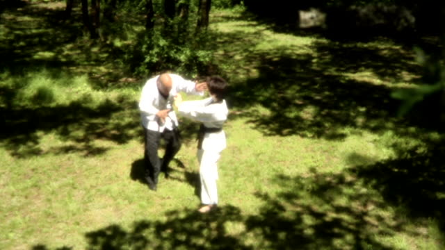 der kampf – letzten schlag weitwinkelaufnahme - karate stock-videos und b-roll-filmmaterial