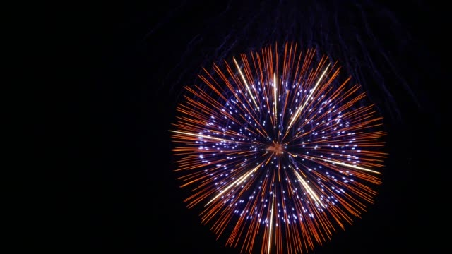 the fireworks in the night sky - un singolo oggetto video stock e b–roll