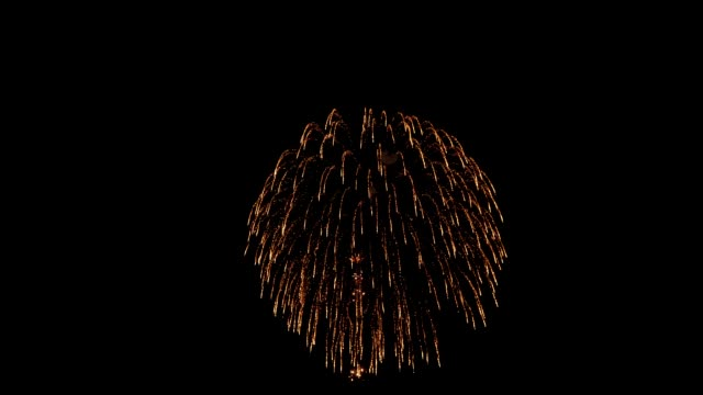 the fireworks in the night sky - video