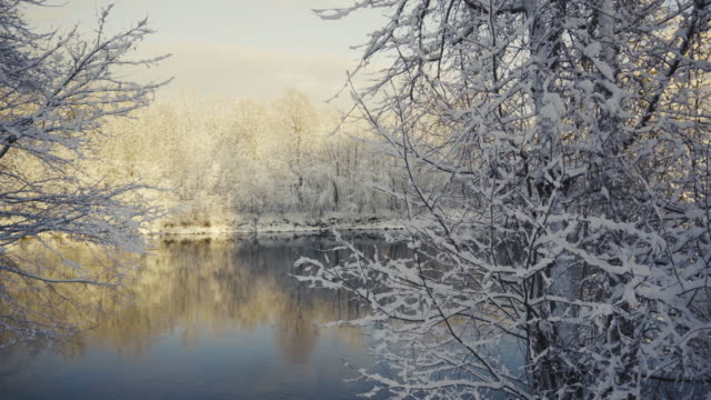The first day of winter with snow on the river