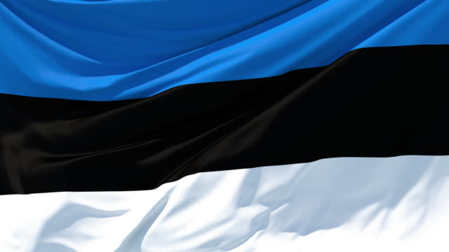 The flag of Estonia fluttering in the wind Animation of moving textile abstract modern background estonia stock videos & royalty-free footage