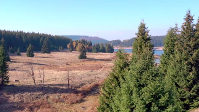 die flaje wasser-reservoir in der tschechischen republik-drohne-ansicht - kieferngewächse stock-videos und b-roll-filmmaterial