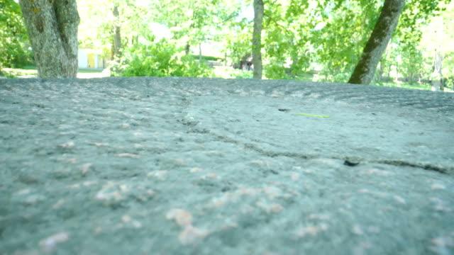 公園内の平らなコンクリートテーブル ビデオ